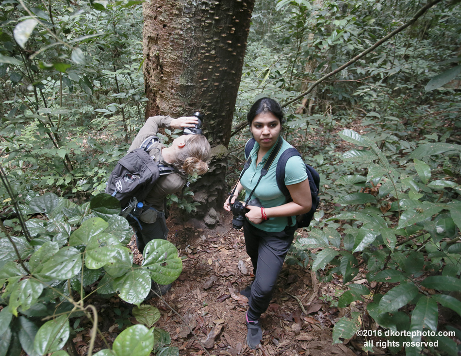 Andrea focusses on the texture of tree bark as Shivangi listens to sounds of the rainforest in Vera Plaines.
