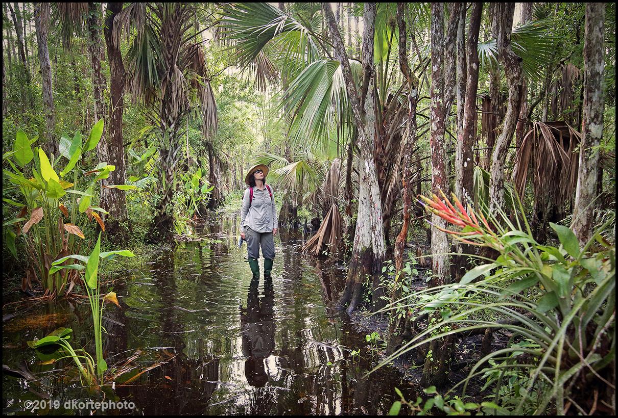 LisaSwamp0331_DKortephoto