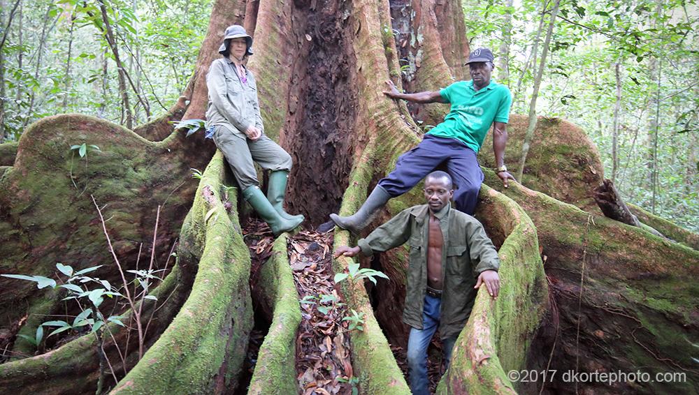 Image result for Sapo National Park